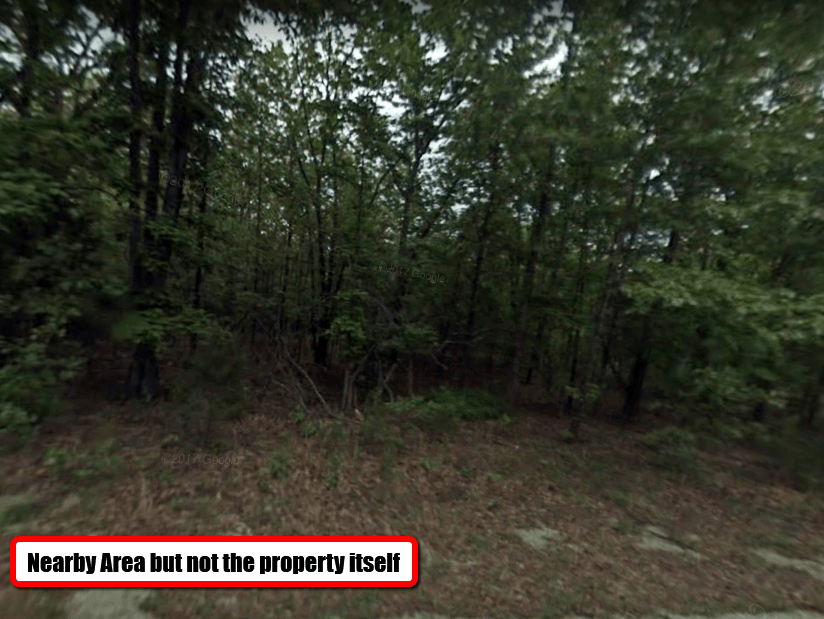 0.38 ACRE LOT IN IZARD COUNTY, ARKANSAS!
