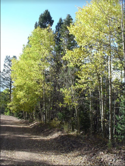 0.4682 ACRE LOT IN COSTILLA COUNTY, COLORADO