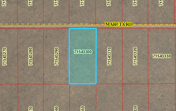 5 ACRES LOT IN COSTILLA COUNTY, COLORADO