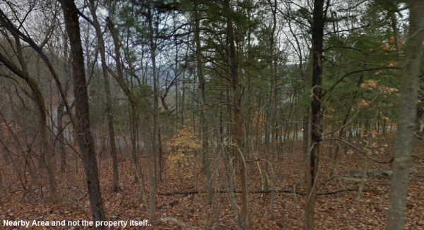 On Crescent Drive, 0.2544-Acre in Taney County, Missouri!