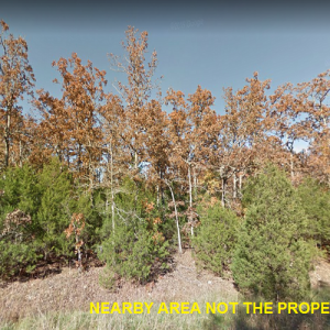 Wooded Lot in Izard County! Close to Crown Lake!