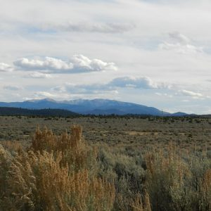 2.5 ACRE LOT IN COSTILLA COUNTY, COLORADO