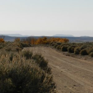 5 ACRE LOT IN COSTILLA COUNTY, COLORADO