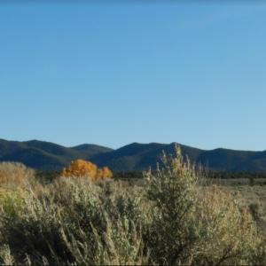 4.70 ACRE LOT IN COSTILLA COUNTY, COLORADO