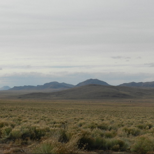 5.01 ACRES LOT IN COSTILLA COUNTY, COLORADO