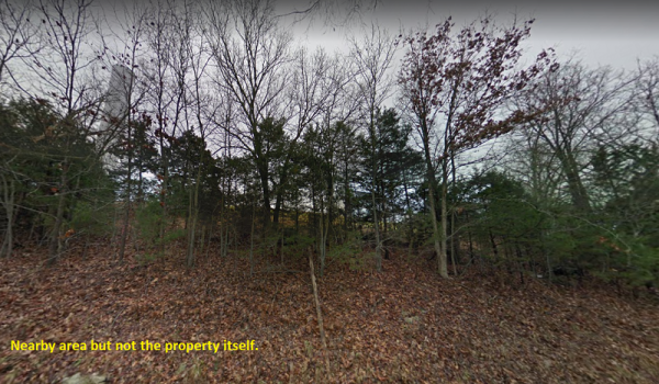 Wooded 0.2865 Acres in Taney County, MO!