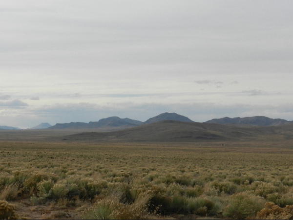 5 ACRES LOT IN COSTILLA COUNTY, COLORAD