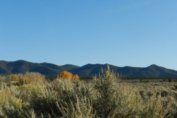 5.0 ACRE LOT IN COSTILLA COUNTY, COLORADO