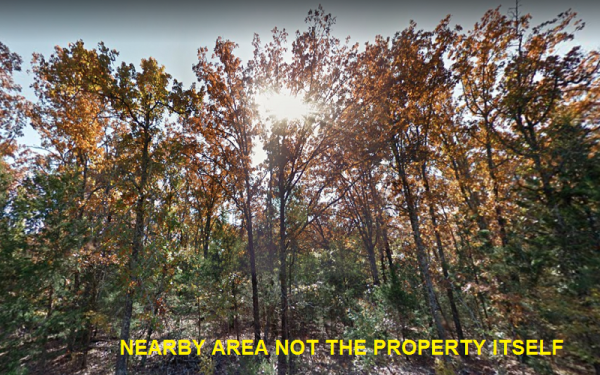Drive Up, Build a Cabin in the Woods! Lot for Sale