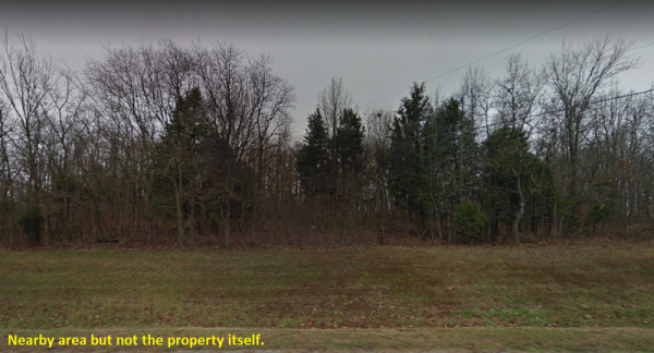 SOLD-Wooded Lot in Taney County, MO!