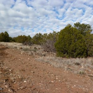1.24 ACRE LOT IN APACHE COUNTY, ARIZONA