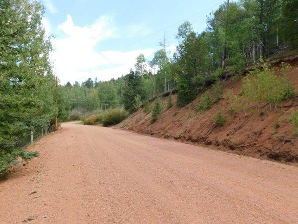 GORGEOUS PROPERTY IN CRIPPLE CREEK