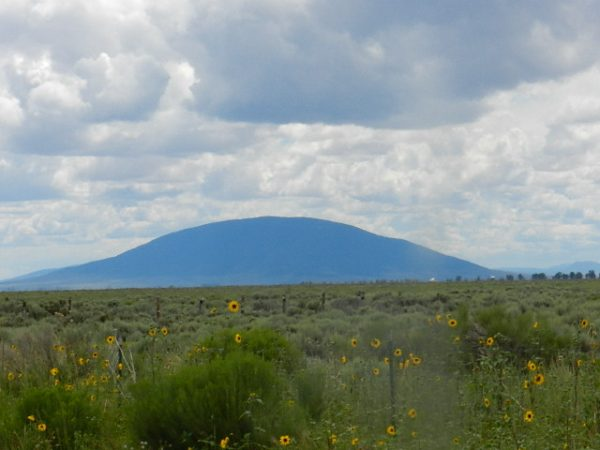 40 ACRES LOT IN COSTILLA COUNTY, COLORADO