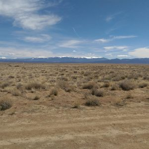 5 BEAUTIFUL ACRES IN SOUTH COLORADO