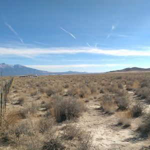 5 ACRES NEAR FORT GARLAND & BLANCA
