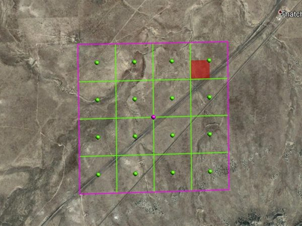FIVE ACRES IN LAS ANIMAS