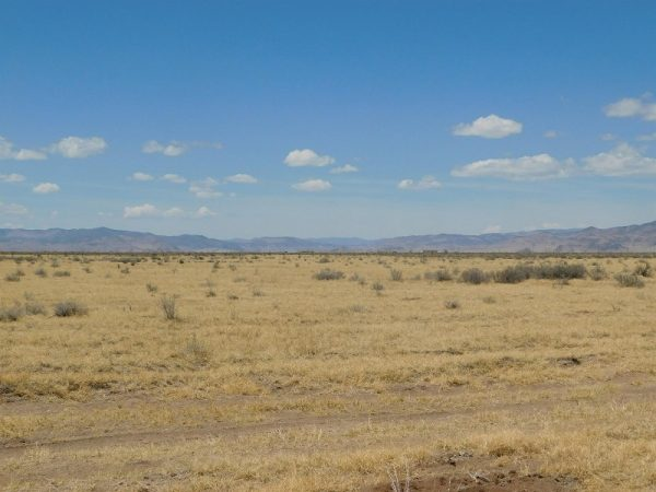 LOT IN MOFFAT NEAR STATE HIGHWAY