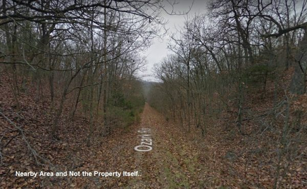 Wooded Lot near Houses in Taney County, MO!