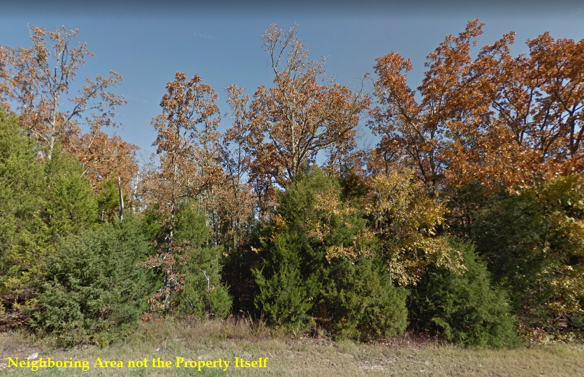 0.22 ACRES LOT IN IZARD COUNTY, ARKANSAS
