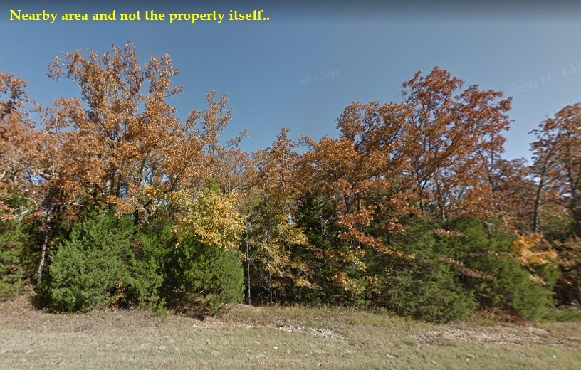 0.23 ACRES LOT IN IZARD COUNTY, ARKANSAS