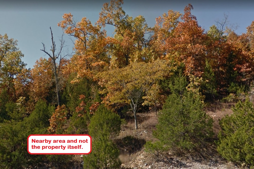 0.32 ACRE LOT IN IZARD COUNTY, ARKANSAS!
